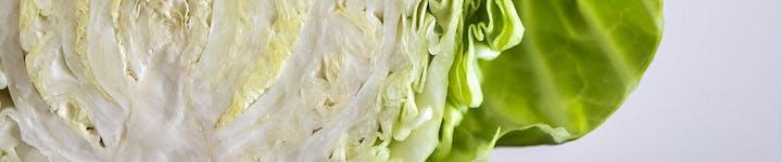 キャベツは低カロリーでお腹にやさしい♪ダイエットにおすすめのレシピを紹介