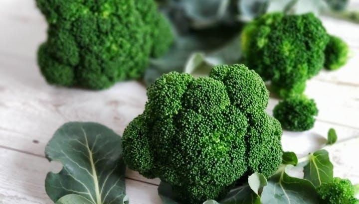ブロッコリーは低カロリーで食物繊維が豊富!ダイエットや美容におすすめ