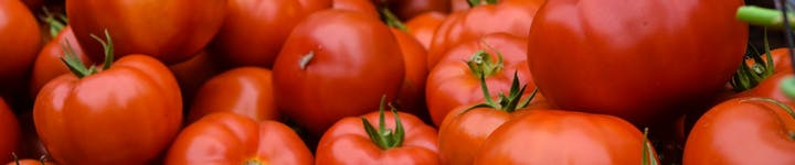 【必見】トマトは生で食べると栄養素の吸収率が悪い!?カロリー・糖質もご紹介