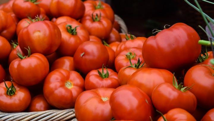 【必見】トマトは生で食べると栄養素の吸収率が悪い!?カロリー・糖質もご紹介の画像