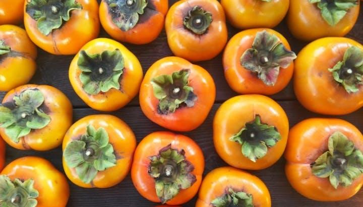 【管理栄養士監修】柿のカロリーや糖質は?栄養はあるの?ダイエット中の食べ方も紹介