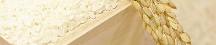 ダイエット中でもお米を食べられる!?ご飯のカロリーオフ方法をご紹介します!