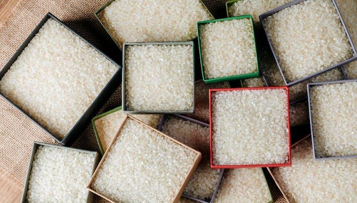 白米(お米)のカロリー・糖質をわかりやすく解説!玄米やもち麦と炊いた場合も