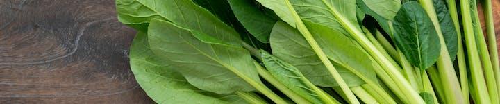 小松菜は一株4キロカロリー!低糖質でミネラルたっぷりのレシピもチェック