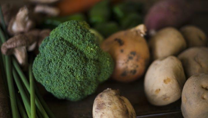 【ダイエット民は必読】ブロッコリーがおすすめな理由とレシピを管理栄養士が徹底解説